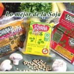 Soyana - Tofu
